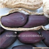 5pcs/bag black peanut vegetable Seeds DIY Home Garden