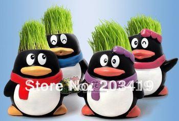 Gift penguin cute Hair man Plant Bonsai Grass Doll Office Mini Plant Fantastic Home Decor pot+seeds     wholesale retail