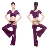 Free Shipping + gifts hot-selling Belly Dance costume set wear with the gifts of breast pad 3pcs/lot purple