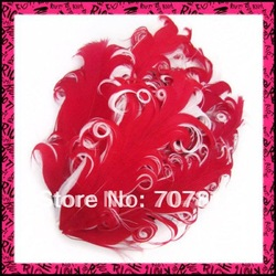 Free shipping,hot sale mixed-color curly feather pads,60pcs/lot,high quality,good price(China (Mainland))