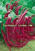 10pcs/bag red beans vegetable Seeds DIY Home Garden