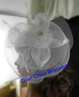 Freeshipping wholesale different color hair flower accessories feather hair accessories fascinator with clip HZ02WE