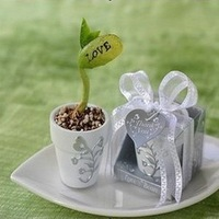Free Shipping +Love Magic Bean +100set / lot+Very Good for Wedding Favors