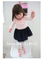 Retail Free Shipping & Returns Accepted Fashion New Korean Style Baby Girl Lace Chiffon Dress Long Sleeve Children Dress