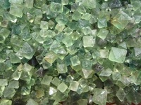 500g Lot Of 83pcs Natural Green Fluorite Crystal Octahedrons Rock Specimen China R177