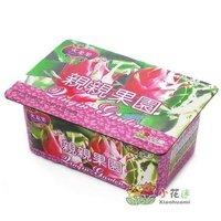 Creative Gift Plant can pot flower Office Mini Fantastic DIY Home Decoration mini Orchard Pitaya