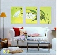 Free Shipping Worldwide , Gallery Quality Modern Wall Art Canvas Oil Painting ytth004