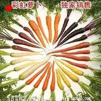 20pcs/bag rainbow Carrot vegetable Seeds DIY Home Garden