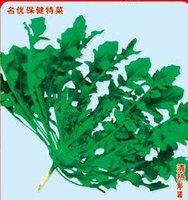 1000pcs/bag Shepherd's purse vegetable Seeds DIY Home Garden