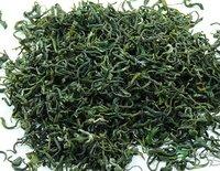 2014 spring green tea rizhao 250g, bean aroma, special taste, free shipping
