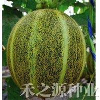 """5pcs/bag Muskmelon """"ChunLei"""" 2-3kg weight Seeds DIY Home Garden"""