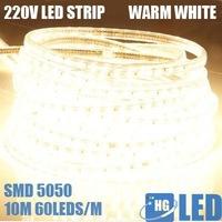 Светодиодная лампа HG 100leds FEDEX DHL 10 , 220v 50  HG-dc100g
