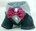 Wholesale, retail, pet supplies wedding dress, a tuxedo, dog clothes