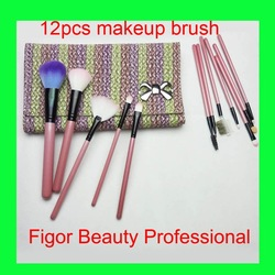 12 PCS Professional Makeup Brush Cosmetic set+ personal delux Pouch Bag Free shipping(China (Mainland))