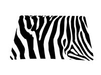 Zebra Print Colorful Optical Laser Mouse Mice Pad Mat Mousepad