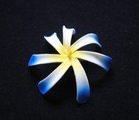 FREE SHIPPING!250pcs Blue Tip Color 4'' Hawaiian Tiare Foam Wedding Hair Flower Accessory with Hair Clip