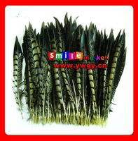 SMILE MARKET FREE SHIPPING 100PCS/LOT 20-25CM FACTORY OUTLETS QUALITY PRODUCTS pheasant hair