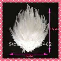 Free Shipping White Soft feather pads 50pcs / lots Gift  Wholesale