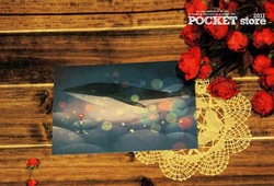 Free shipping/ whale /greeting card /postcard /2pcs/set(China (Mainland))
