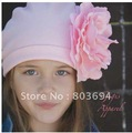 hot sell fashion baby hat  free shipping . hl-088