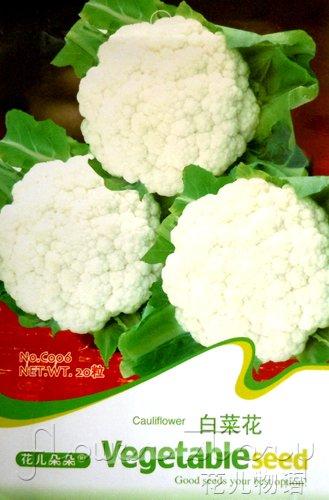 1 Pack 20+ Seeds Heirloom Healthy Vegetable White Cauliflower Broccoli Seeds  C006(China (Mainland))
