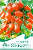 5 Pack 150 Seed Tomato Vegetable-Fruit Food HOT Seed B065, free shipping