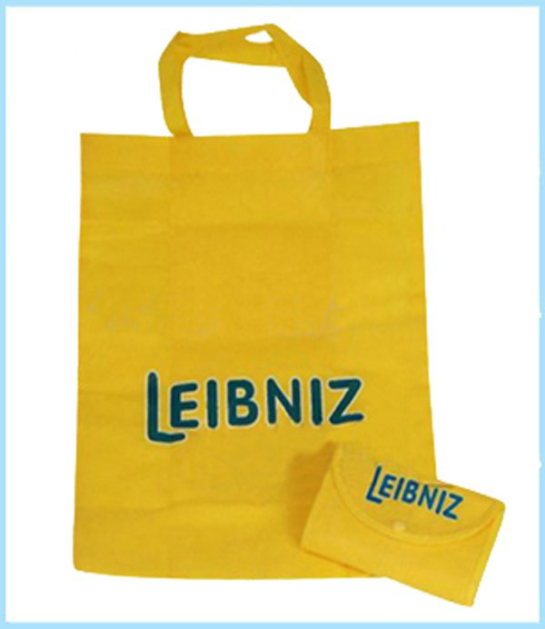 Providing Customized logo printing! Foldable non-woven bag with handle / tote bag with Hasp 80gsm fabric MOQ1000PCS(China (Mainland))