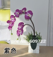 2013 High Simulation Hand-made 2 Branch White Silk Moth Orchid Artificial Flower  with Vase  Set  Decoration  FL097