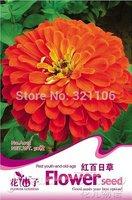 1 Pack 50 Seeds  Red Zinnia Elegans Flower Beautiful A015