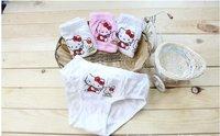 girls KT cat underwear fit 2-10yrs kids children cartoon briefs 12 pieces/lot 3 colors 1 size  free shipping