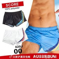 2012 new men's shorts/men's beach shorts/summer beach wear