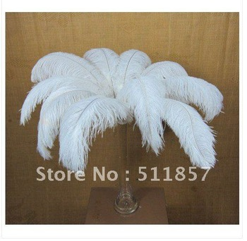 "wholesale 100pcs/lot 18-20"" White Ostrich Feather Plume FREE SHIPPING wedding decoration"