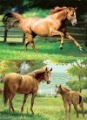 "25*35mm PET 3D high definition decorative picture of "" Galloping Horses "", 2 images change"