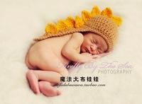 New arrived, baby clothes of photography, photography props, present small dinosaur Angle wool hat