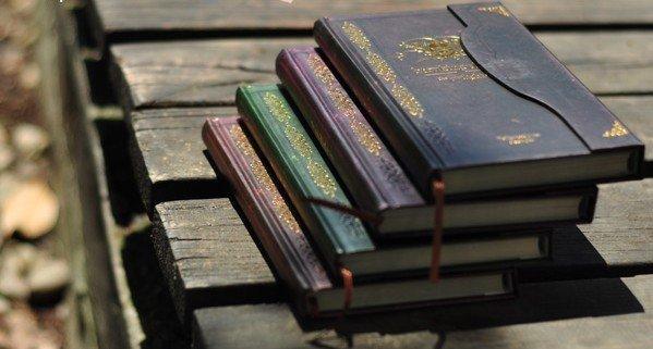 Cadernos e estojo da Saga Twilight.