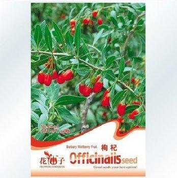 free shipping 100pcs/bag goji berry/ lycium barbarum seeds for DIY home gargen