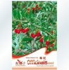free shipping 50pcs/bag goji berry/ lycium barbarum seeds for DIY home gargen