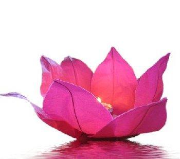 100ps/lot+Free Shipping lotus lanterns,floating lanterns,Pond Floating Lotus Water Lanterns,Festival Wishing River Lanterns