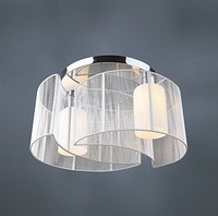 Free shipping Modern Simple Designed Chandelier with 2 Lights