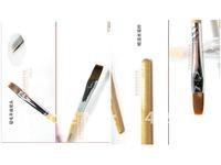 Phototherapy manicure set/mink wooden pole phototherapy pen/coating gel/nail art tools wholesale/nail art pen