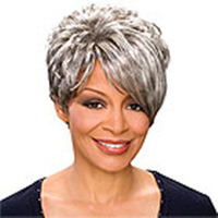 FreeShipping  New Stylish Silver White Short Straight Lady's Fashion Sexy Party Cosplay Synthetic Hair Wig/Wigs