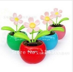 Solar apple flower, car decoration 0154(China (Mainland))