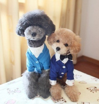 Popular design Light Blue dog clothes pet dress coats with Autumn Fall wear nice flash POLO skirt