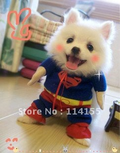 Pet autumn/winter clothes,  pet superman clothes, dog warm two-legged hoodie sweaters, thick cotton clothing