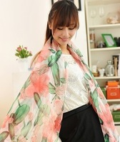 W-03 2012 new arrival spring classic cucumber silk scarf