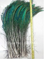 Wholesale 200pcs 35-40cm 14-16 inches natural peacock feather peacock plume peacock plumage Free Shipping