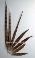 Free Shipping 100pcs 40-45cm 16-18 inches natural pheasant feather tail Ringneck pheasant feather tail