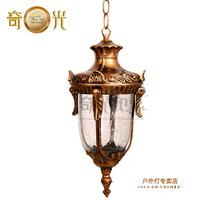 Waterproof lamp outdoor balcony fashion pendant light chain hoist dome light led street light