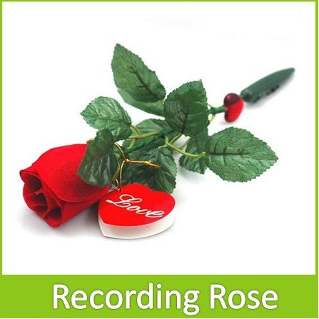 Novel Beautiful Recording Rose With built-in Love songs For Valentine Romantic Gift Present(China (Mainland))