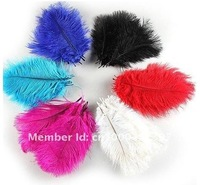 Wholesale ostrich feather 100pcs/lot  6-8 inches 15-20cm ostrich plumes ostich plumage 6 color for choose Free Shipping